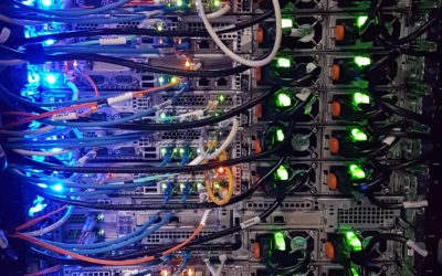 Business Fiber Internet: the Right Fit for Your Company